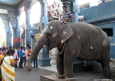 Indian PhD Research Trip Sept-Dec 06 Pondicherry, Tirunivelli 220